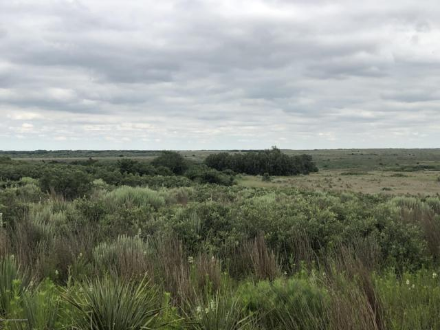 Speed Ranch, Childress, TX 79201 (#19-1252) :: Lyons Realty