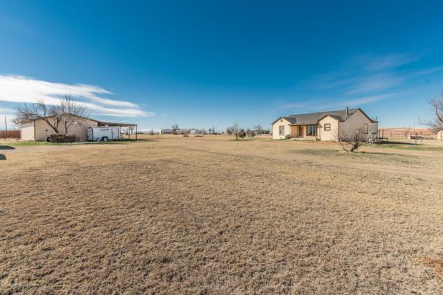 14501 White Tail Ave, Amarillo, TX 79124 (#19-1285) :: Edge Realty