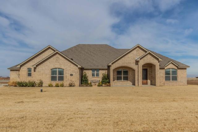 2450 Thunderhead, Canyon, TX 79015 (#19-1390) :: Lyons Realty