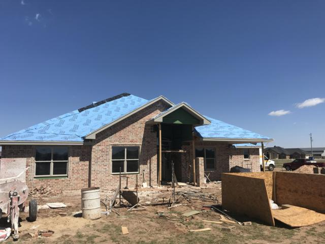 18300 Grasslands Rd, Bushland, TX 79124 (#19-1531) :: Big Texas Real Estate Group