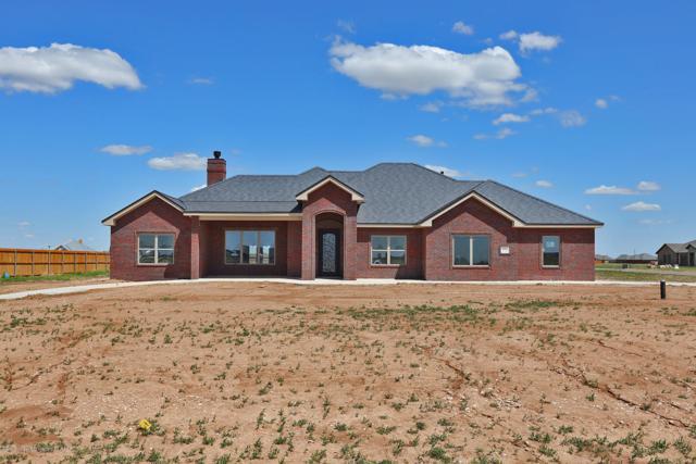 8321 Blue Duck Trl, Amarillo, TX 79118 (#19-2635) :: Lyons Realty