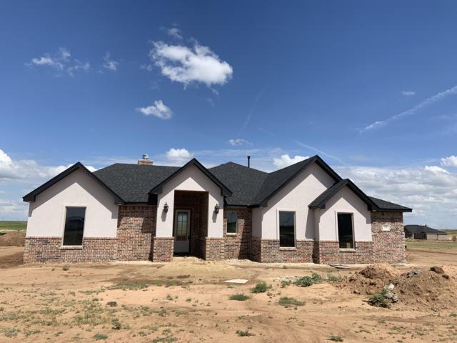 1250 Blakely Hollow Dr, Amarillo, TX 79124 (#19-4122) :: Elite Real Estate Group