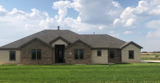 18300 Bradley Ln, Bushland, TX 79012 (#19-5017) :: Lyons Realty
