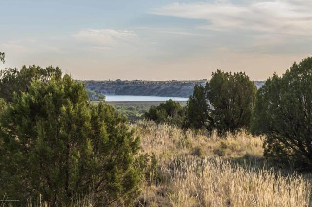 200 Sandy Trl, Canyon, TX 79015 (#19-5501) :: Lyons Realty