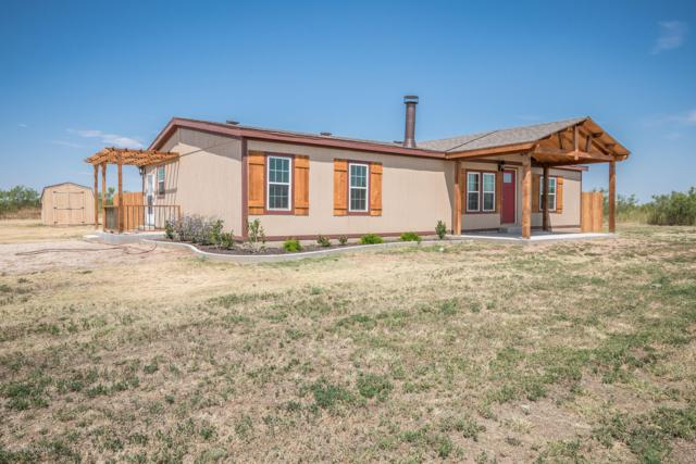 7241 White Buffalo Rd, Amarillo, TX 79124 (#19-5843) :: Lyons Realty