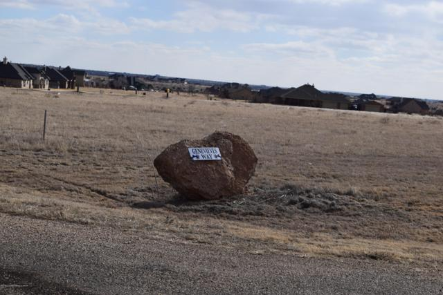 13100 Genevieves Way, Amarillo, TX 79118 (#19-678) :: Edge Realty