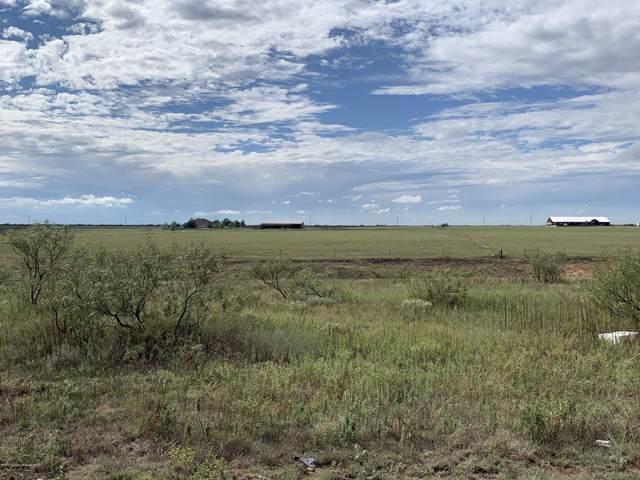 13340 Wandering Rd, Amarillo, TX 79118 (#19-7116) :: Lyons Realty