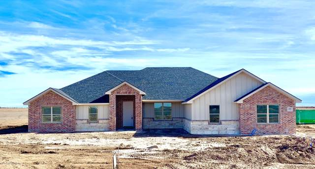 4101 Whitetail Springs Rd, Amarillo, TX 79119 (#19-7963) :: Lyons Realty