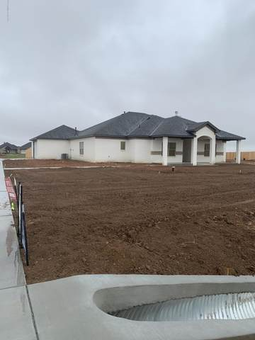 9301 Trinity Dr, Amarillo, TX 79119 (#20-1108) :: Live Simply Real Estate Group