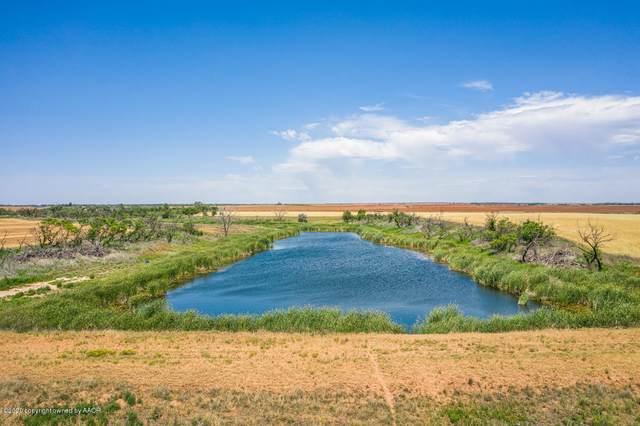 Spring Creek Ranch, Memphis, TX 79245 (#20-3481) :: Elite Real Estate Group