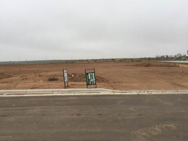 1436 Riesling Way, Amarillo, TX 79124 (#20-4818) :: RE/MAX Town and Country