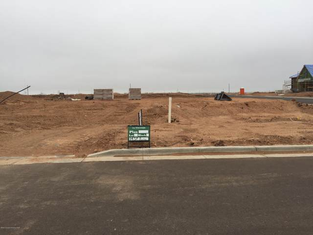 1437 Riesling Way, Amarillo, TX 79124 (#20-4999) :: RE/MAX Town and Country