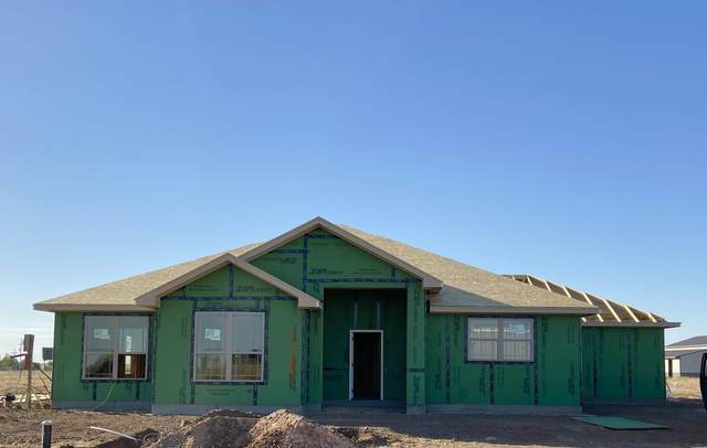 17101 Trinity Ave, Amarillo, TX 79012 (#20-6472) :: RE/MAX Town and Country