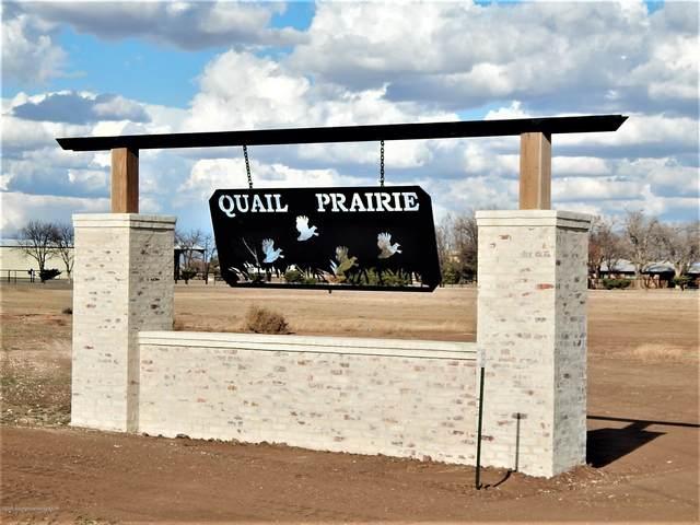 201 Snow Quail Rd, Canyon, TX 79015 (#20-6604) :: Elite Real Estate Group