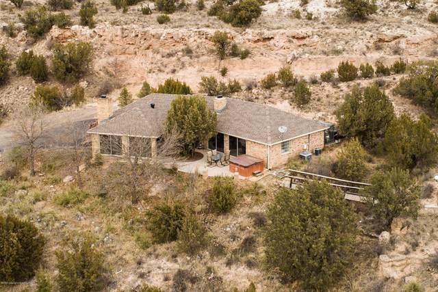 104 Gina Ln, Amarillo, TX 79118 (#20-698) :: Lyons Realty