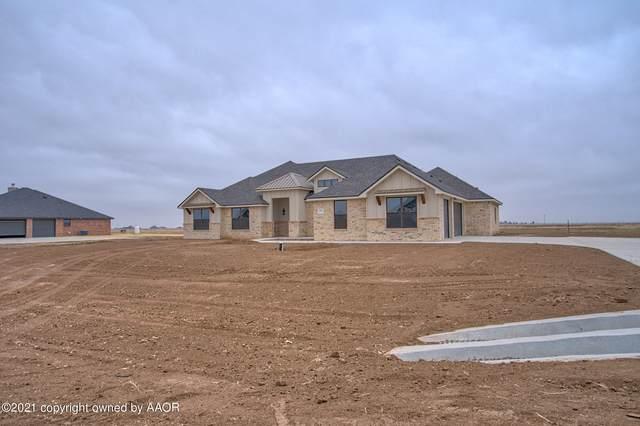 4201 Wildcat Springs Rd, Amarillo, TX 79119 (#20-6998) :: Lyons Realty