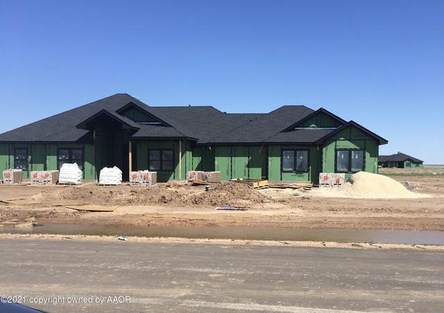 9591 Trinity Dr., Amarillo, TX 79119 (#21-1685) :: RE/MAX Town and Country
