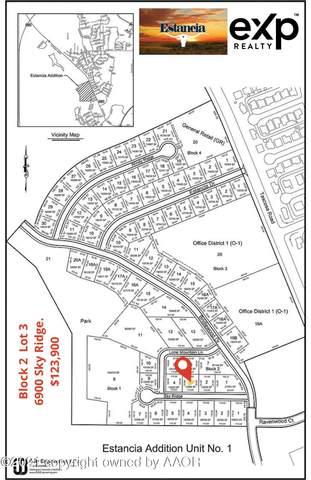 6900 Sky Ridge, Amarillo, TX 79124 (#21-1978) :: Live Simply Real Estate Group