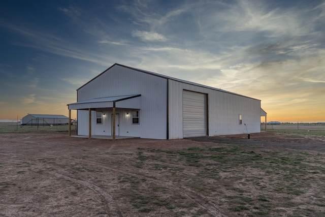 12260 Equestrian Trl, Amarillo, TX 79118 (#21-2487) :: Lyons Realty