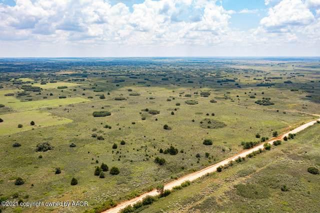 40 Acres Wheeler County, Wheeler, TX 79096 (#21-4155) :: Keller Williams Realty