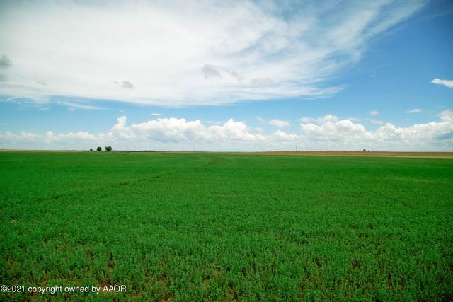 Farm 1737 Tract 42, Clarendon, TX 79226 (#21-4874) :: Keller Williams Realty