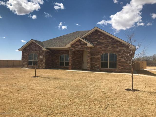 14750 Maple Dr, Amarillo, TX 79119 (#18-111983) :: Gillispie Land Group