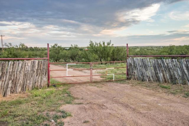 1550 Carbon Rd, Borger, TX 79007 (#18-116294) :: Elite Real Estate Group