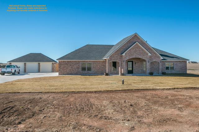 13221 Bluff Ridge Trl, Canyon, TX 79015 (#18-116681) :: Edge Realty