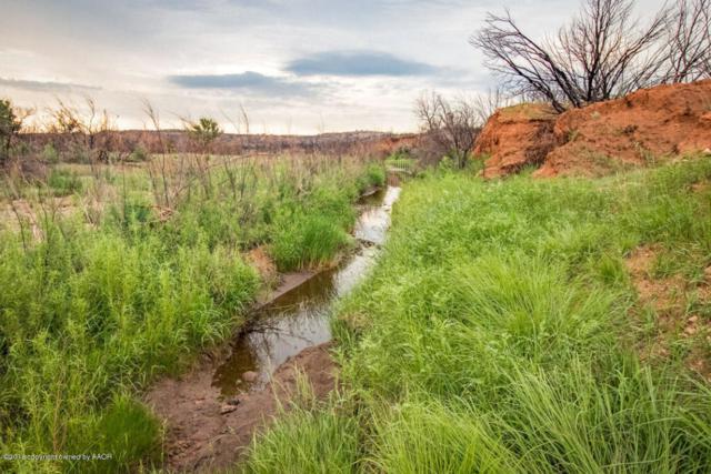 Frances Pearl Ranch, Claude, TX 79019 (#18-116998) :: Lyons Realty