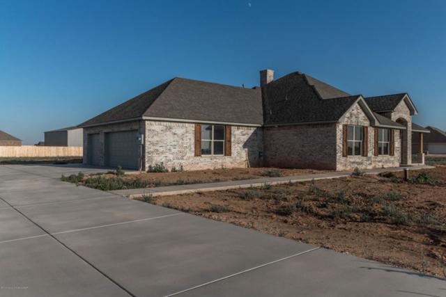 2471 Blue Mesa, Bushland, TX 79124 (#18-118080) :: Edge Realty