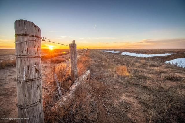 Brorman Farm, Vega, TX 79092 (#18-119512) :: Edge Realty