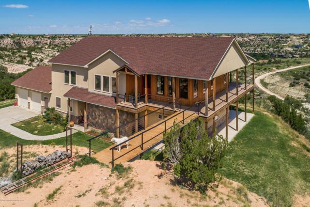 7701 Distant View Dr, Amarillo, TX 79118 (#19-4543) :: Elite Real Estate Group