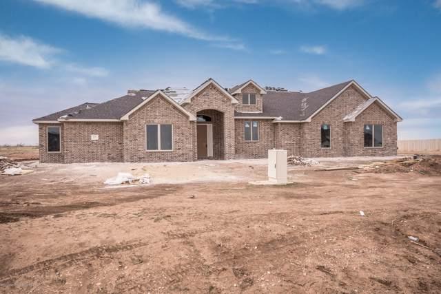 1151 Blakely Hollow Dr, Amarillo, TX 79124 (#19-8489) :: Elite Real Estate Group