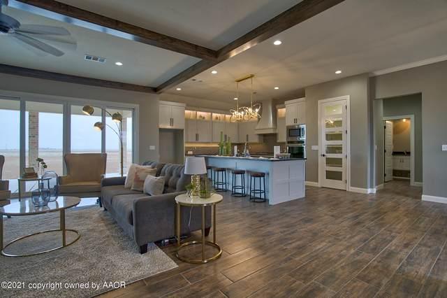 4201 Wildcat Springs Rd, Amarillo, TX 79119 (#21-1869) :: Elite Real Estate Group