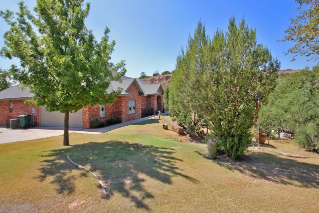 312 Wildflower Ln, Amarillo, TX 79118 (#18-117929) :: Elite Real Estate Group