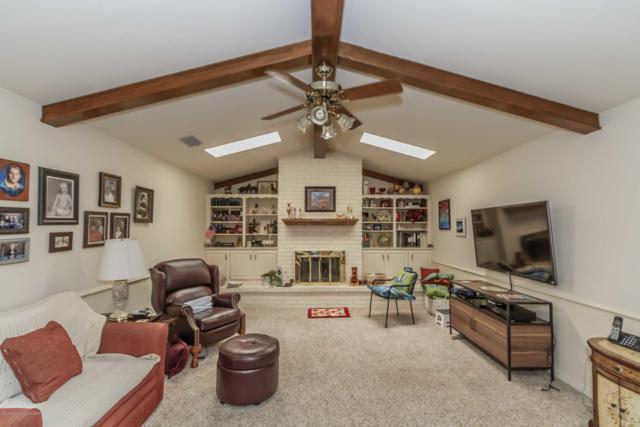 7118 Adirondack Trl, Amarillo, TX 79106 (#19-2615) :: Lyons Realty