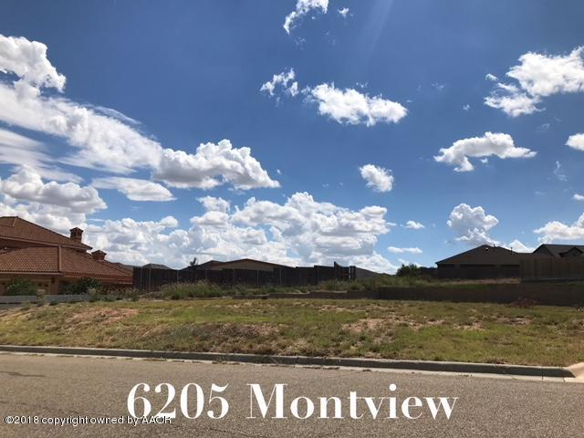 6205 Montview Dr, Amarillo, TX 79124 (#18-117989) :: Gillispie Land Group
