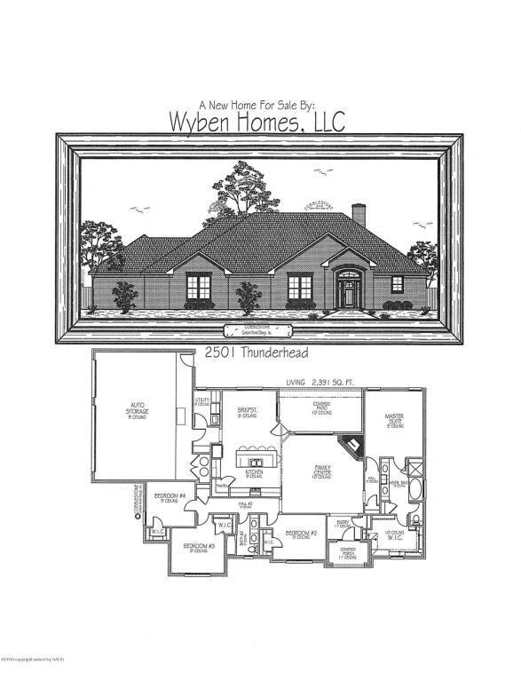 2501 Thunderhead St., Canyon, TX 79015 (#18-119278) :: Big Texas Real Estate Group
