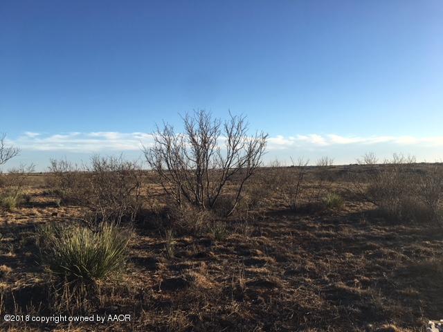 4501 Paloma Dr, Amarillo, TX 79108 (#18-119749) :: Elite Real Estate Group