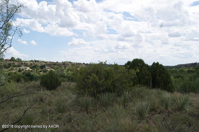 0 Palomino, Amarillo, TX 79118 (#18-119986) :: Lyons Realty