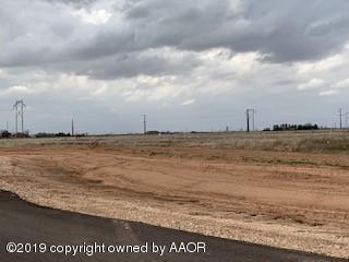 5351 Lonesome Dove Trl, Amarillo, TX 79118 (#19-2376) :: Lyons Realty