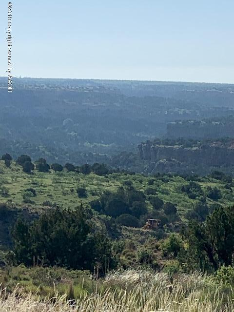 7801 Canyon Bend Rd, Amarillo, TX 79118 (#19-4539) :: Elite Real Estate Group