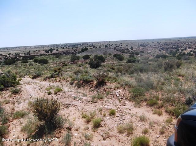 Hwy 469, Other - Not in list, NM 88426 (#19-5175) :: Elite Real Estate Group