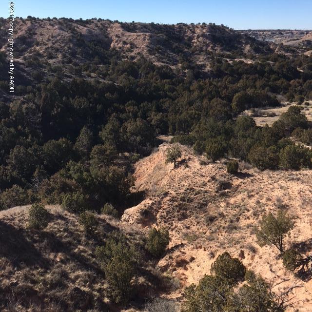7600 Hidden View Rd, Canyon, TX 79118 (#19-6032) :: Elite Real Estate Group