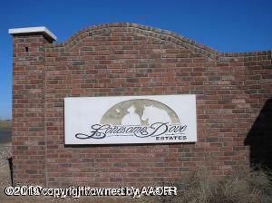 5811 Cpt Augustus Mccrae Trl, Amarillo, TX 79118 (#19-7384) :: Lyons Realty