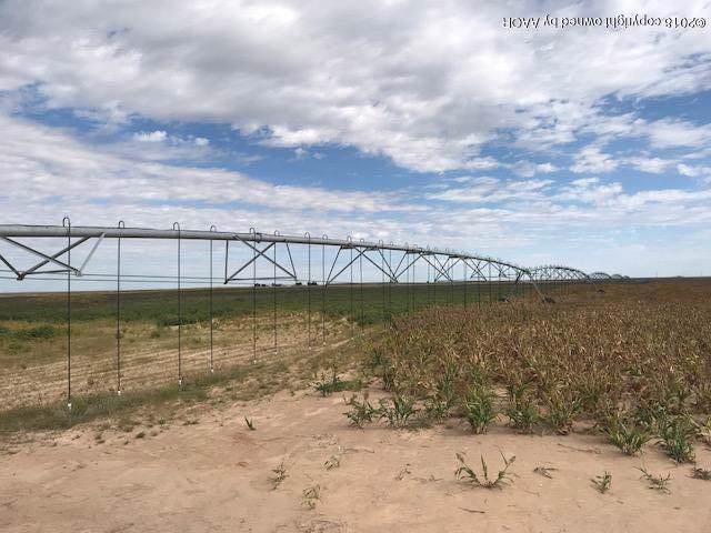 Sherman County +/-720, Sunray, TX 79086 (#19-7875) :: Live Simply Real Estate Group