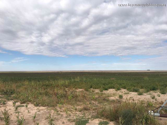 Sherman County +/-160, Sunray, TX 79086 (#19-7876) :: Live Simply Real Estate Group