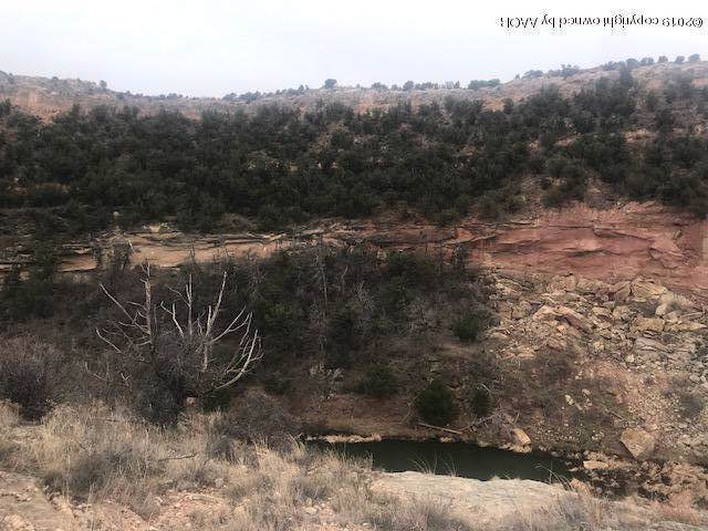 15900 Canyon Pass Rd, Amarillo, TX 79118 (#19-8357) :: Live Simply Real Estate Group
