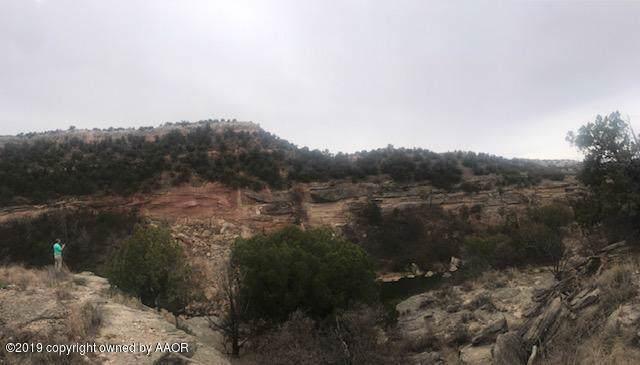 15850 Canyon Pass Rd, Amarillo, TX 79118 (#19-8358) :: Lyons Realty
