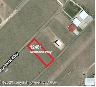 12481 Montana Way - Photo 1